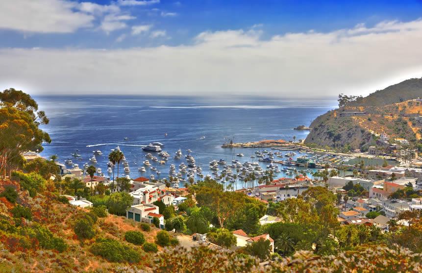 Ile de Catalina
