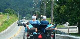 Les Amish : un Buggy