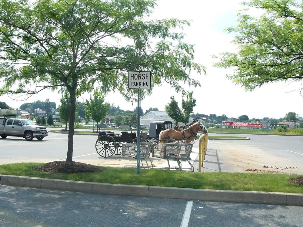 Les Amish : Un parking pour chevaux